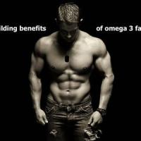FAQs: Bodybuilding with Omega-3