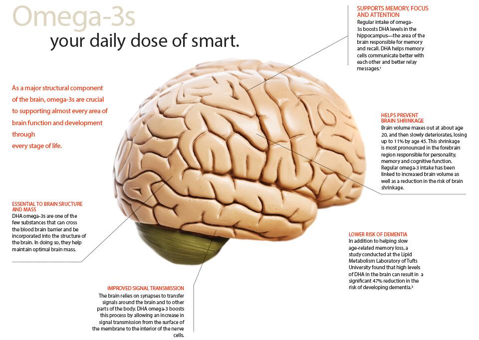 brain-health omega-3